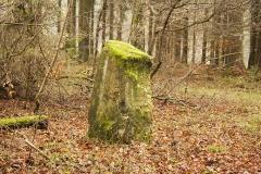 der hänicke stein